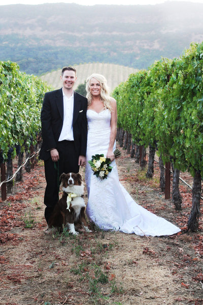 wine country wedding, vineyard wedding, wedding with dog