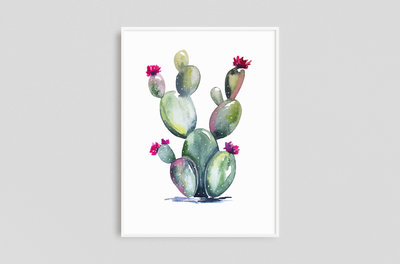 Watercolors - Framed - Cactus