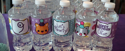 Slider kawaii kitty water bottles