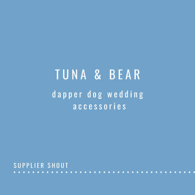 Dog Suits for Weddings