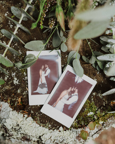 photos of bride and groom surrounded by plants