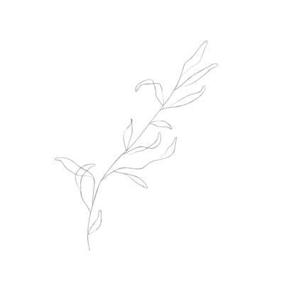 minimalist botanical line sketches - galerie design studio-02