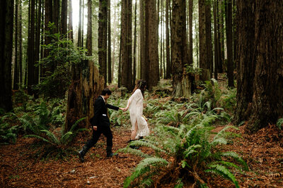 Two brides walk together through a redwood forest in Arcata, California