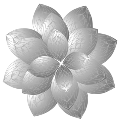 4D-Lotus_Rotated_BW_508