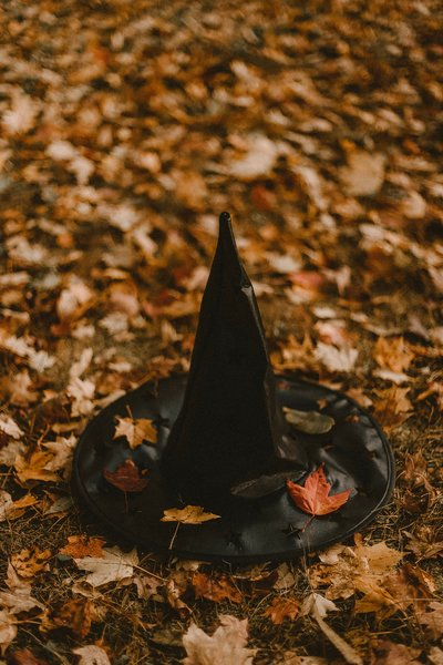 FREE PIC witch hat  GROVE on leaves SALES PAGE