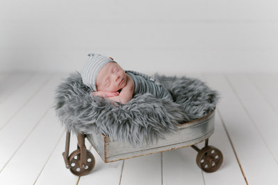 top newborn photographers arkansas