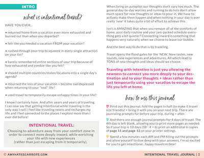 Intentional Travel Journal-02