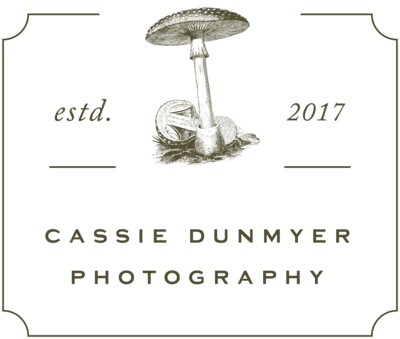 Cassie Dunmyer Photography Indianapolis Indianapolis Fort Wayne Bloomington Indiana Engagement Wedding Fine Art Photojournalistic Authentic Portrait14