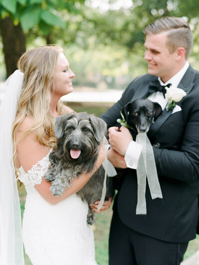 Bride and Groom hold their miniature dachshunds for a photo on their wedding day at the Taylor Grady House captured by Laura Watson