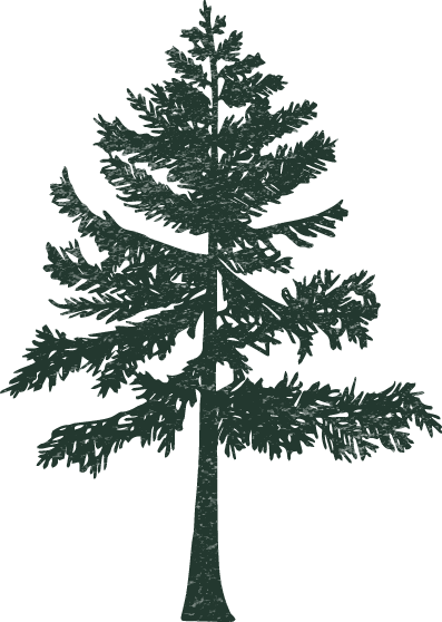 Tree Illustration _ Green