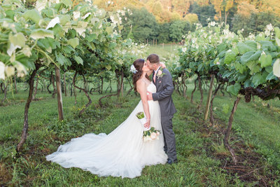 Mountain Rose Vineyards Summer Wedding