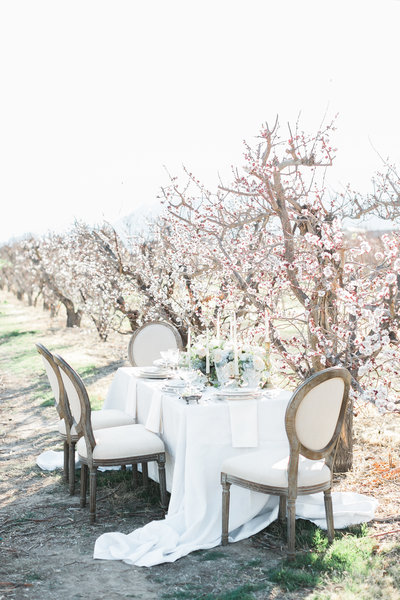 photo of a tablescape at Gilcrease Orchard in Las Vegas with flowing linen and a white and blush centerpiece with taper candles