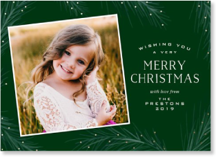 Green Pine holiday photo card