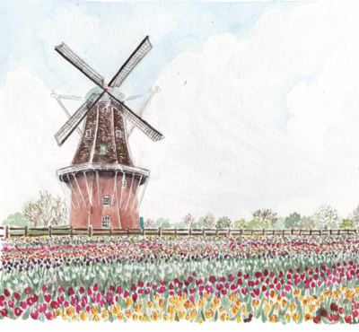 windmill island holland michigan watercolor
