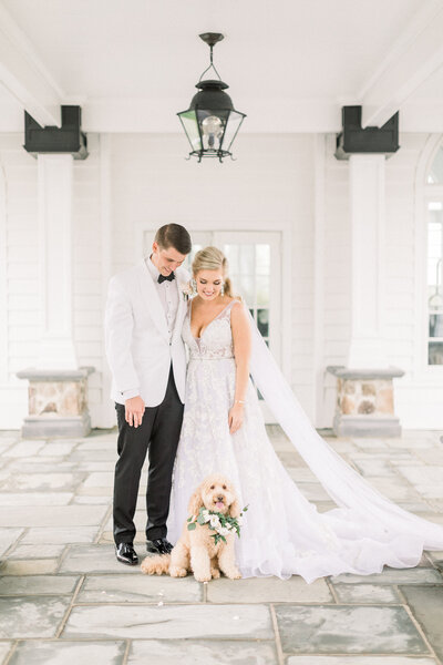 bride and groom looking at dog