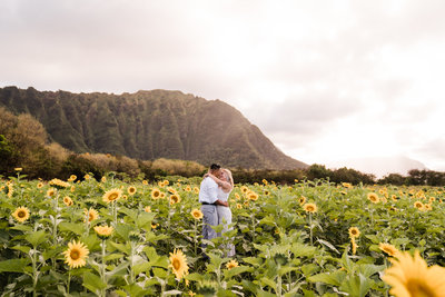 waimanalo-country-farms-sunflower-field-elopement-sydney-and-ryan-photography-1