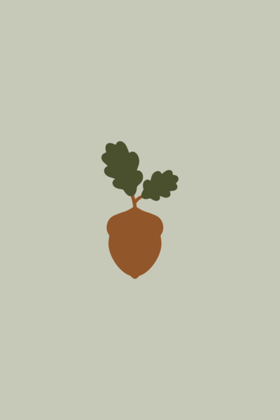 small-and-mighty-co-branding-acorn-icon