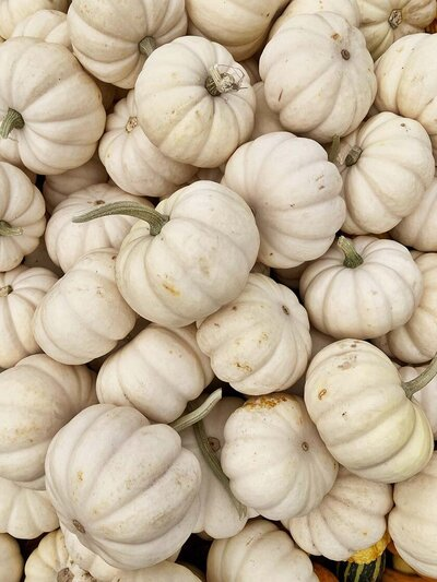 White Pumpkins Jumble & Flow