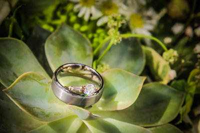 Wedding ring in succulent. Photo by Ross Photography, Trinidad, W.I..