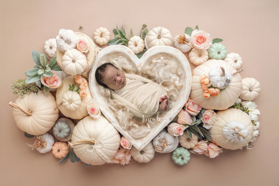 Knowles Photography-PumpkinHeartBowl-Marvin Waxhaw NC Newborn Baby Photographer