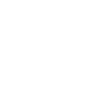 Robyn Hango Website Design Co. circular logo with botanical & script elements