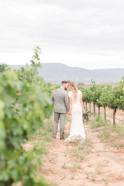 VINEYARD WEDDING AZ81