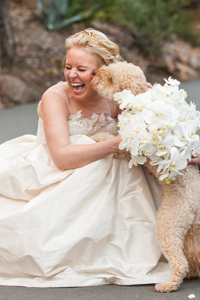 Photograph of Bride With Dog at Calistoga Ranch in Napa