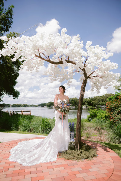 Orlando Luxury Weddings
