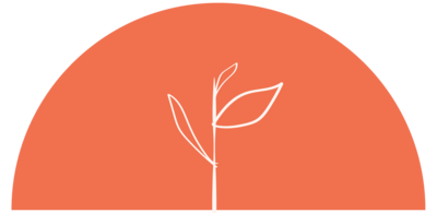 flourish-icon-orange-17