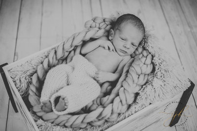 Liams Newborn Session-3