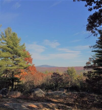 Honey Hill View of Monadnock