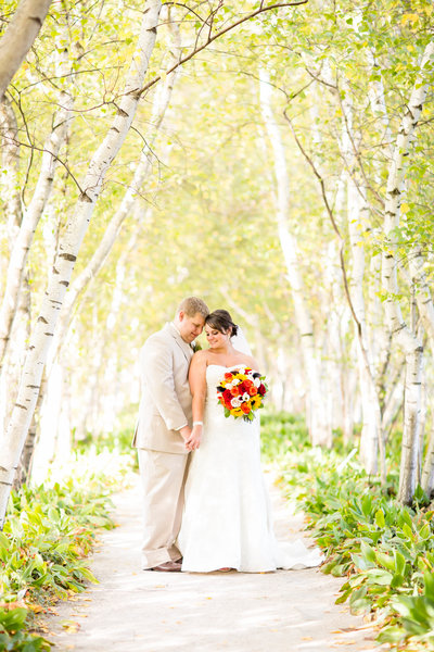 bride and groom birch tree row at stan hwyet photographed by loren jackson photography
