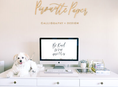 Pirouette Paper Company- Branding Session-20