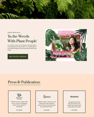 BrandingCaseStudy-Jungle-Home