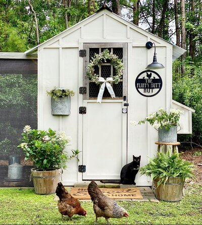 Summer Chicken Coop