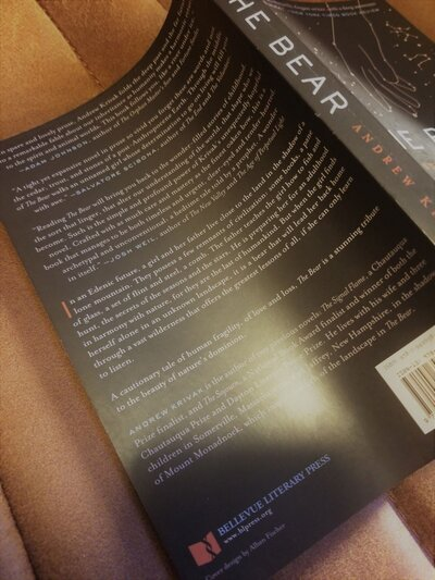 The Bear Back Cover