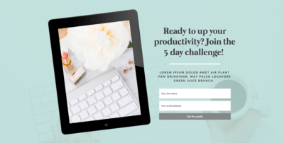 5Lead Page Showit Templates - Elizabeth McCravy Shop -