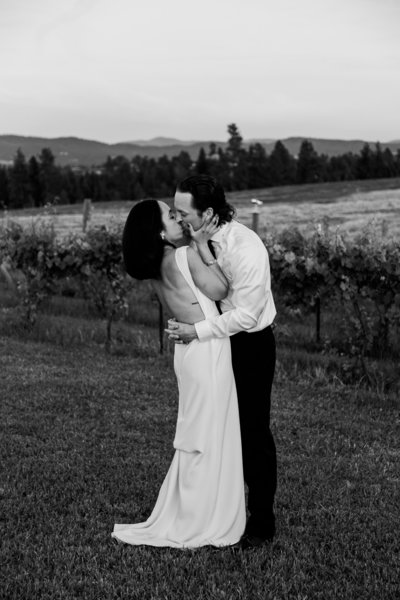 alycia-lovell-photography-alix-rick-trezzi-farm-winery-wedding-124