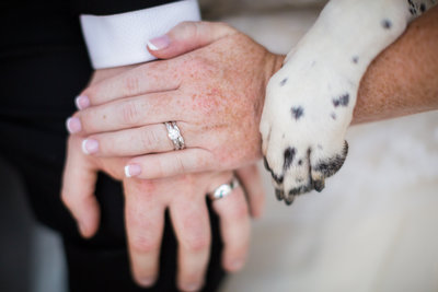 Bride and Groom showing off new rings and dog paw