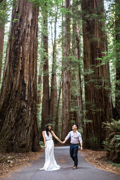 Couple wearing wedding clothes walk down a paved path surrounded by towering redwood trees.