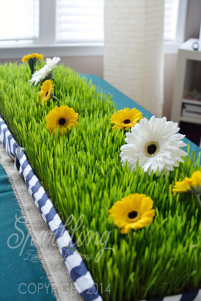 Sparkling Events Design - Wheat Grass Gerbera Daisy Centerpiece