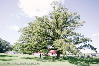 sugarland_barn_wedding-121