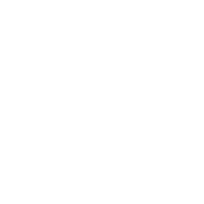 FRANZI ANNIKA Photography
