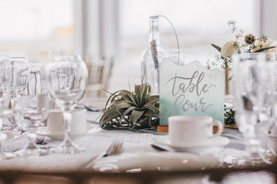 Wedding Reception table numbers and air plant