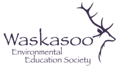 waskasoo-logo-colored