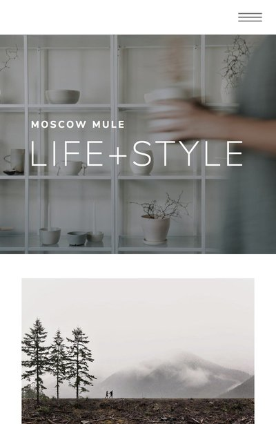 Moscow Mule Mobile Home