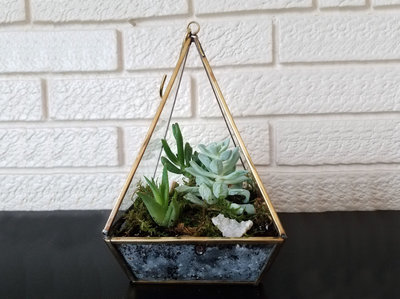 large-terrarium-arrangement-fleurology-designs