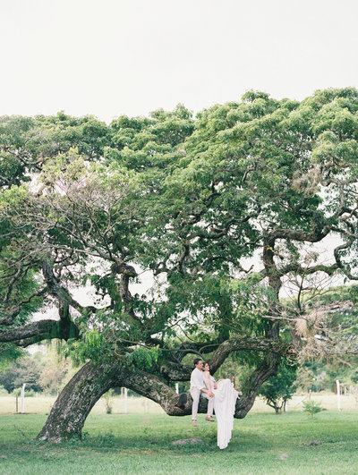 Colombia-destination-wedding-tree-Stephanie-Brauer