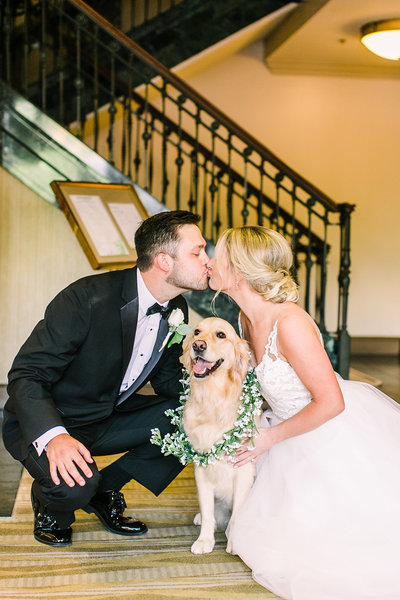 clink-events-greenville-wedding-planner-westin-dog-wedding