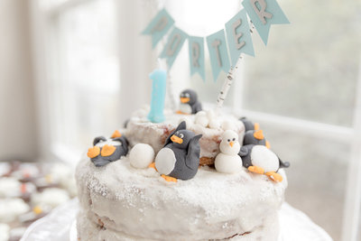one-year-cake-smash-birthday-cake-maryland-photographer